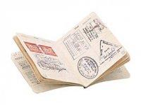 Паспорта, прививки